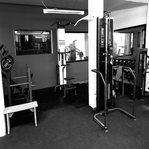 free weights and machine gym
