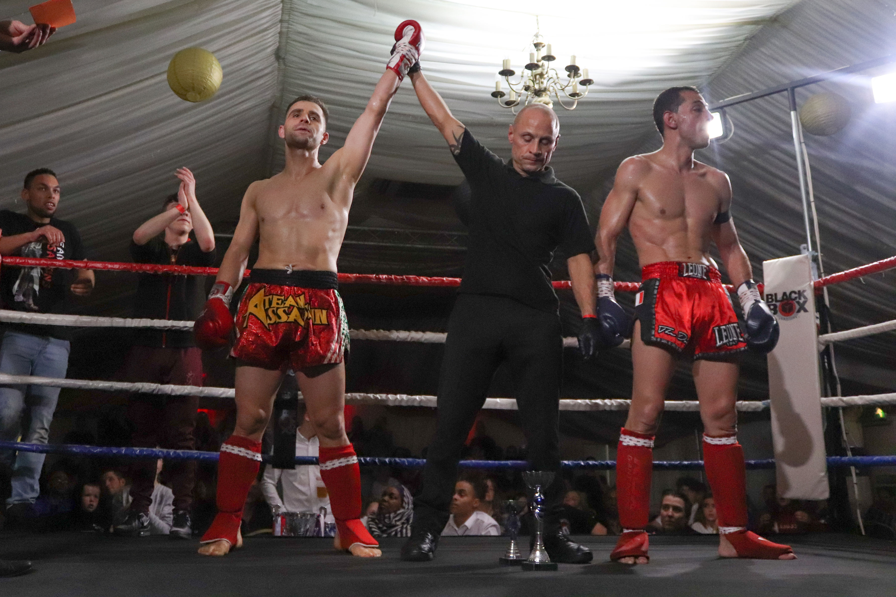 The Eagle Kickboxing Academy - Martial Arts Blogs, News and